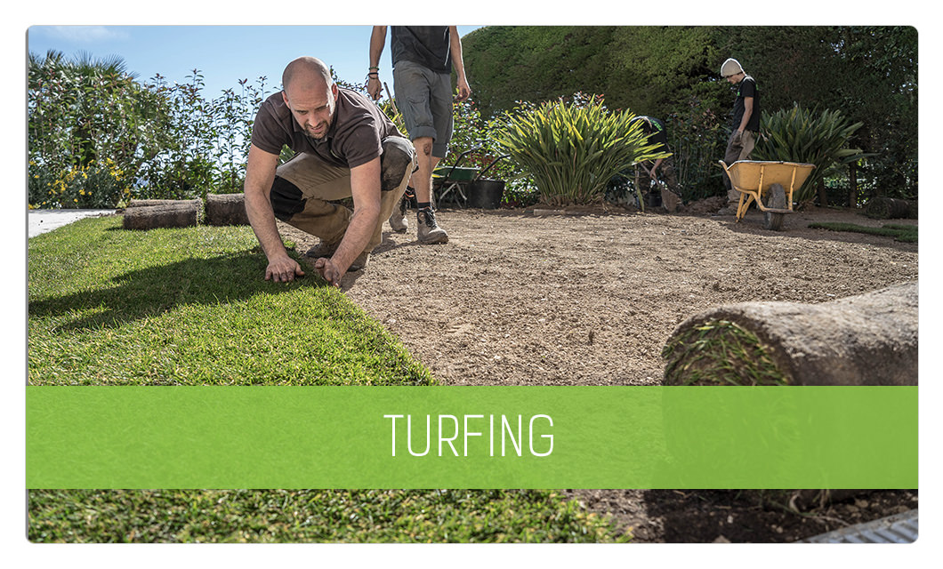 Turfing in Cannes