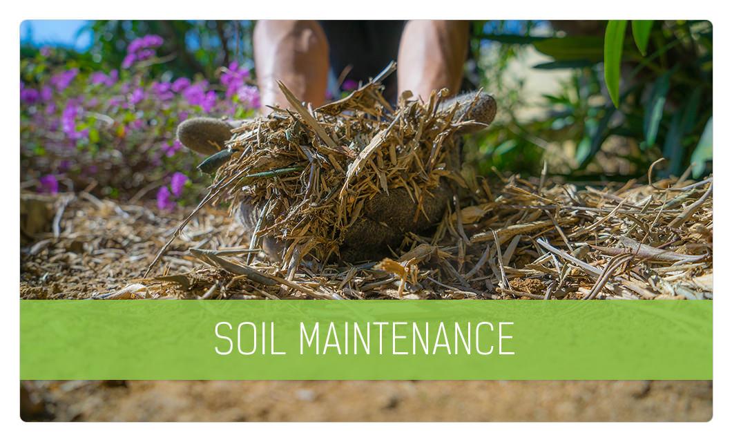 Soil maintenance in Cannes