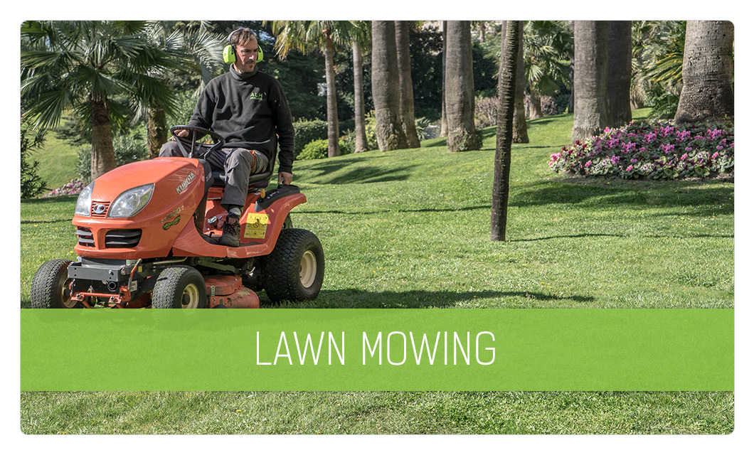 Lawn maintenance in Cannes